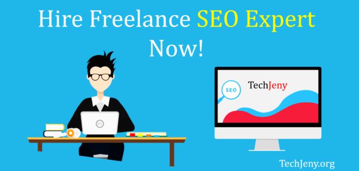 Hire Freelance SEO Expert USA
