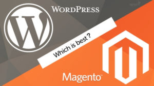 Comparative Analysis WordPress vs Magento for eCommerce Business