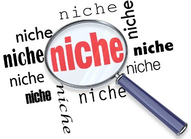 Pick an Interesting Blogging Niche