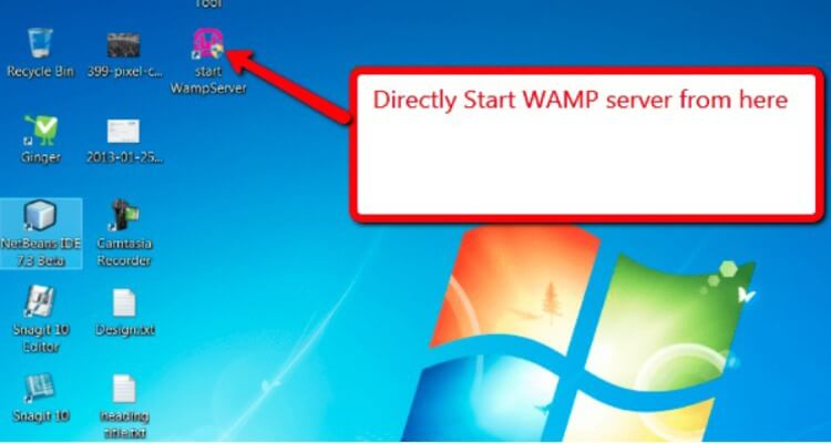 Running the WAMP server