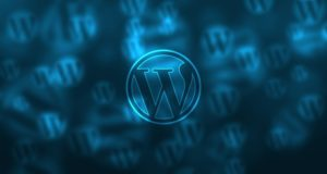 WordPress Plugins For Understanding Your Visitor Behavior